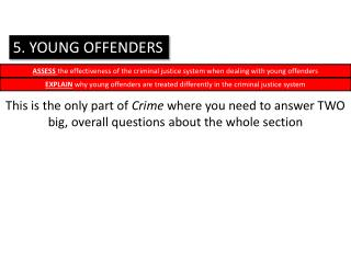 5. YOUNG OFFENDERS