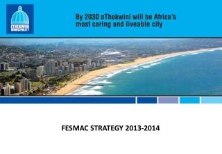 FESMAC  STRATEGY 2013-2014