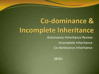 Dominance Inheritance Review