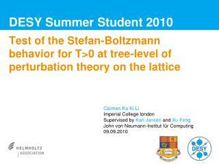DESY Summer Student 2010