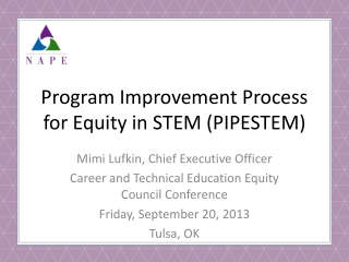 Program Improvement Process for Equity in STEM (PIPESTEM)