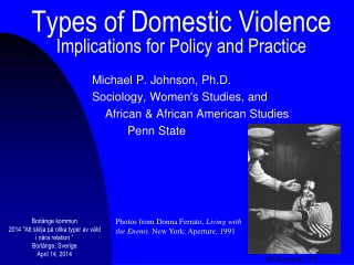 Types of Domestic Violence Implications for Policy and Practice