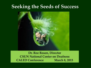 Seeking the Seeds of Success