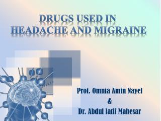 Prof.  Omnia  Amin Nayel & Dr. Abdul latif Mahesar