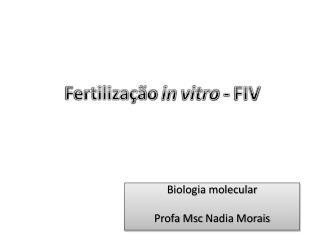 Fertiliza��o  in  vitro - FIV