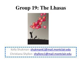 Group 19 :  The Lhasas