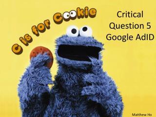 Critical Question 5 Google  AdID