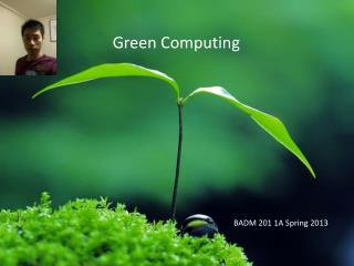 BADM 201 1A Spring 2013
