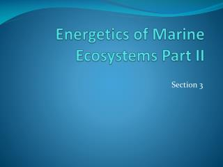 Energetics  of Marine Ecosystems Part II