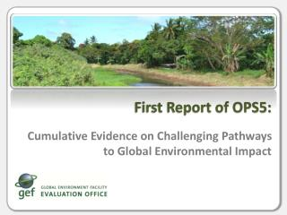 Cumulative Evidence on Challenging Pathways to Global Environmental Impact