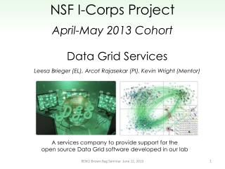 Data  Grid Services
