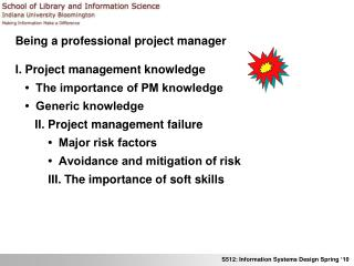 Being a professional project manager