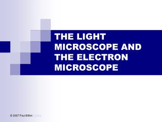 the light microscope and the electron microscope