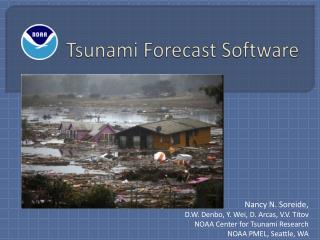 Tsunami Forecast Software