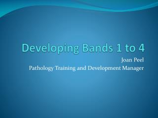 Developing Bands 1 to 4