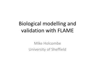 Biological  modelling  and validation with FLAME