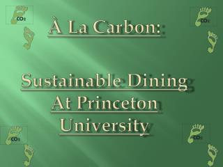 À La Carbon: Sustainable Dining At Princeton University