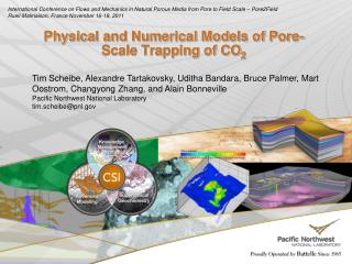 Physical and Numerical Models of Pore-Scale Trapping of CO 2