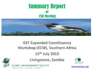 Summary Report of  CSO Meeting