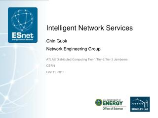 Intelligent Network Services