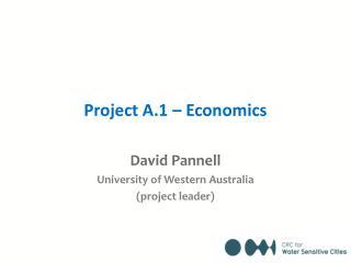 Project A.1 – Economics