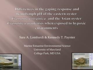 Sara A. Lombardi & Kennedy T. Paynter Marine Estuarine Environmental Science University of Maryland  College Park, MD U