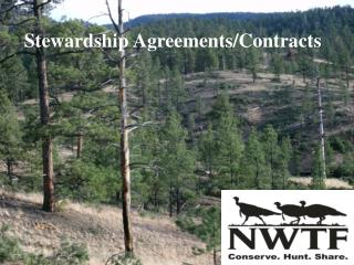 Stewardship Agreements/Contracts