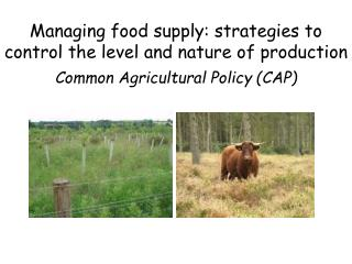 Managing food supply: strategies to control the level and nature of production Common Agricultural Policy (CAP)