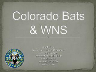 Colorado  Bats & WNS