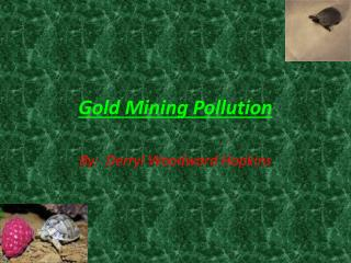 Gold Mining Pollution