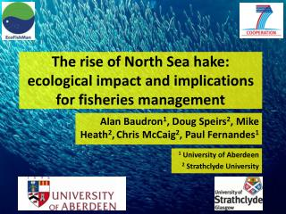 The rise of North Sea hake: ecological impact and implications for fisheries management