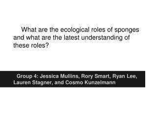 What are the ecological roles of sponges and what are the latest understanding of these roles?