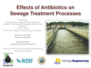 Effects of Antibiotics on Sewage Treatment Processes