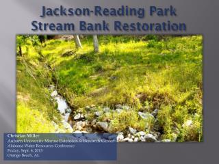 Jackson-Reading Park Stream Bank Restoration