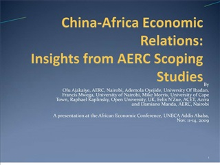 china-africa economic relations: seizing the opportunities and ...