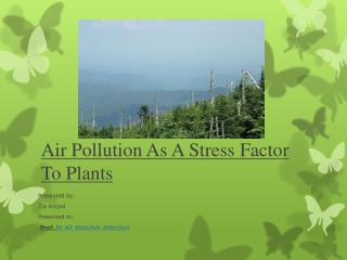 Air Pollution As A Stress Factor To Plants