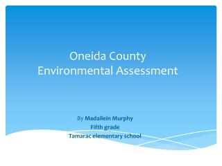 Oneida County Environmental Assessment