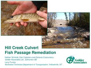 Hill Creek Culvert  Fish Passage Remediation