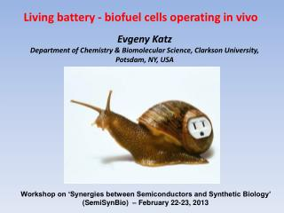 Evgeny  Katz Department of Chemistry &  Biomolecular  Science, Clarkson University, Potsdam, NY, USA