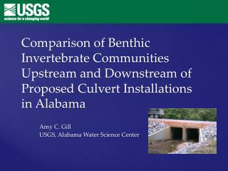 Comparison of Benthic Invertebrate Communities Upstream and Downstream of Proposed Culvert Installations in Alabama