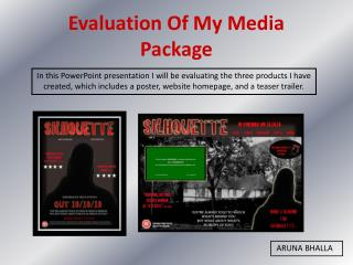 Evaluation Of My Media Package