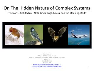 On The Hidden Nature of Complex Systems Tradeoffs,  Architecture , Nets, Grids, Bugs, Brains, and the Meaning of Life