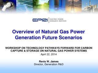 Overview of Natural Gas Power Generation Future Scenarios