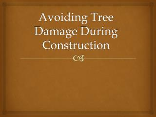 Avoiding Tree Damage During Construction