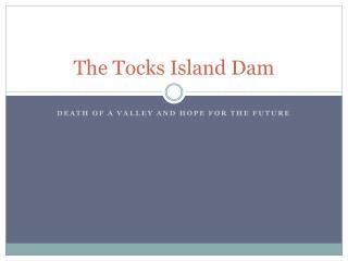 The Tocks Island Dam