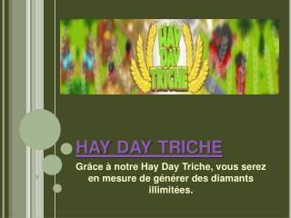 Hay Day Astuce