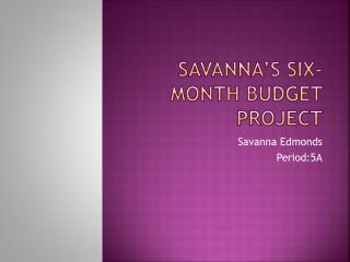 Savanna�s Six-Month Budget Project