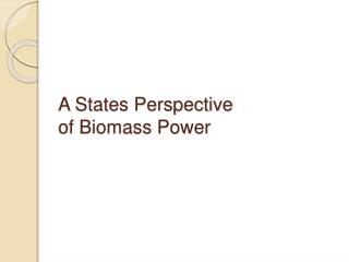 A States Perspective  of Biomass Power