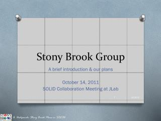 Stony Brook Group