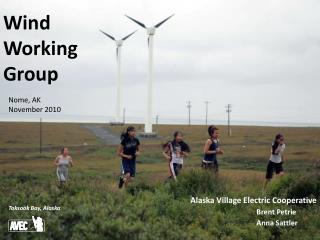 Alaska  Village Electric  Cooperative